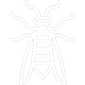 White Wasp Icon
